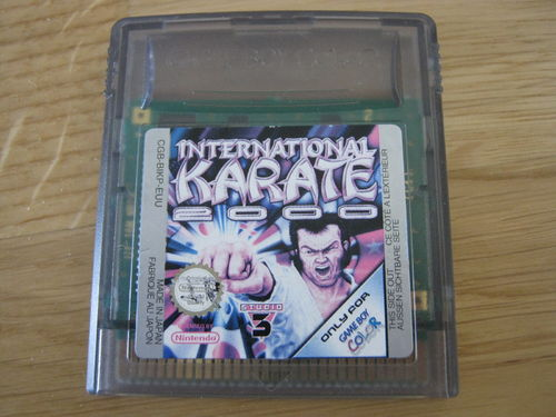 INTERNATIONAL KARATE 2000 für NINTENDO GAMEBOY COLOR